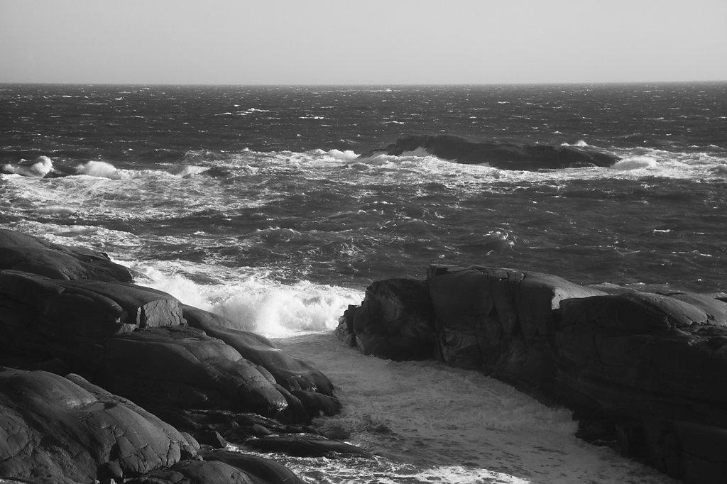 island-fever-fb-pic.jpg